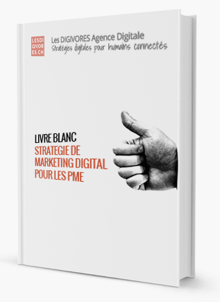 Livre Blanc La Strategie De Marketing Digital Pour Les Pme