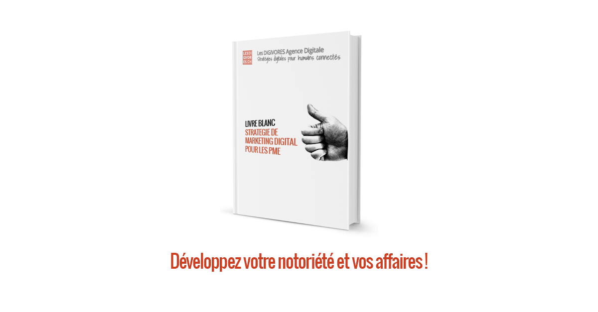 Livre Blanc De La Strategie De Marketing Digital Pour Les