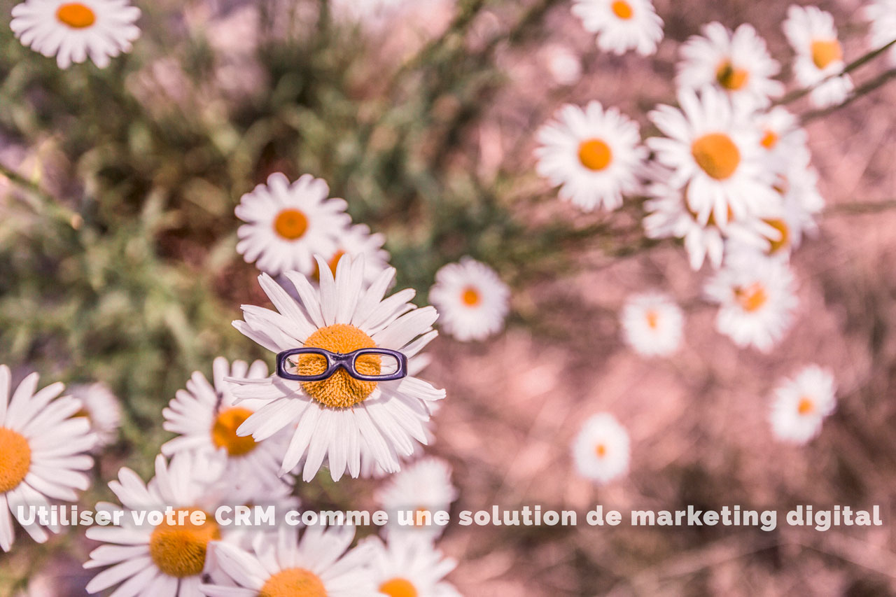 utiliser votre CRM comme une solution de marketing digital